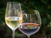 L'importance du choix du verre lors d'une dégustation de vin